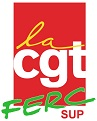 logo CGT FERC